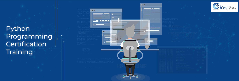 Python programming certification training