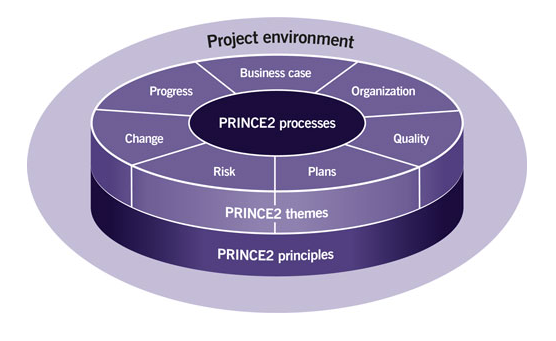 Project environment structures